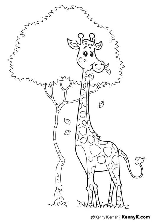 Malvorlage Giraffe | Ausmalbild 20049.