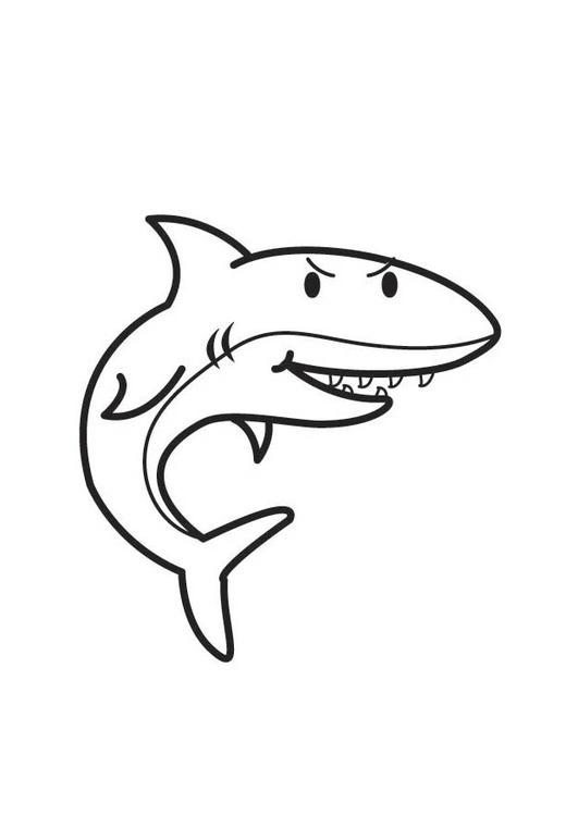 Malvorlage Hai | Ausmalbild 17528.