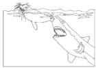 Malvorlage  Haiangriff