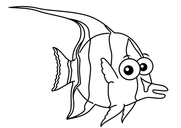 Malvorlage halfterfisch ausmalbild 23087 for Immagini di pesci da stampare