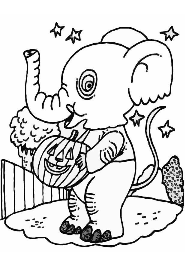 malvorlage halloween elefant  kostenlose ausmalbilder zum