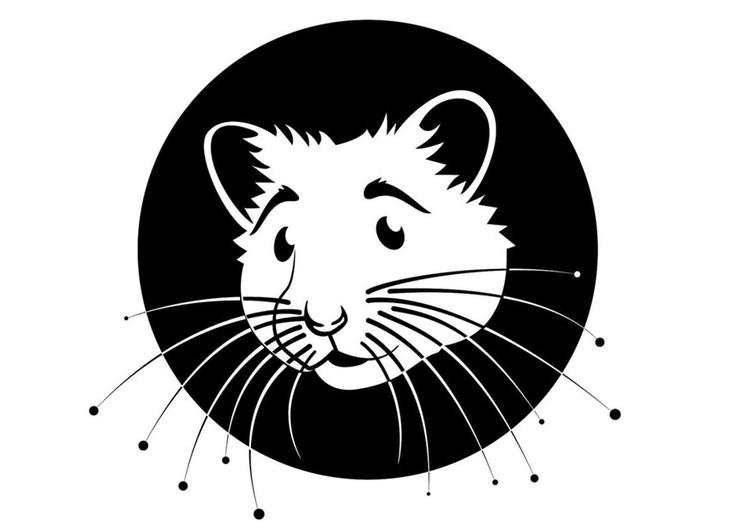 Malvorlage Hamster | Ausmalbild 24671.