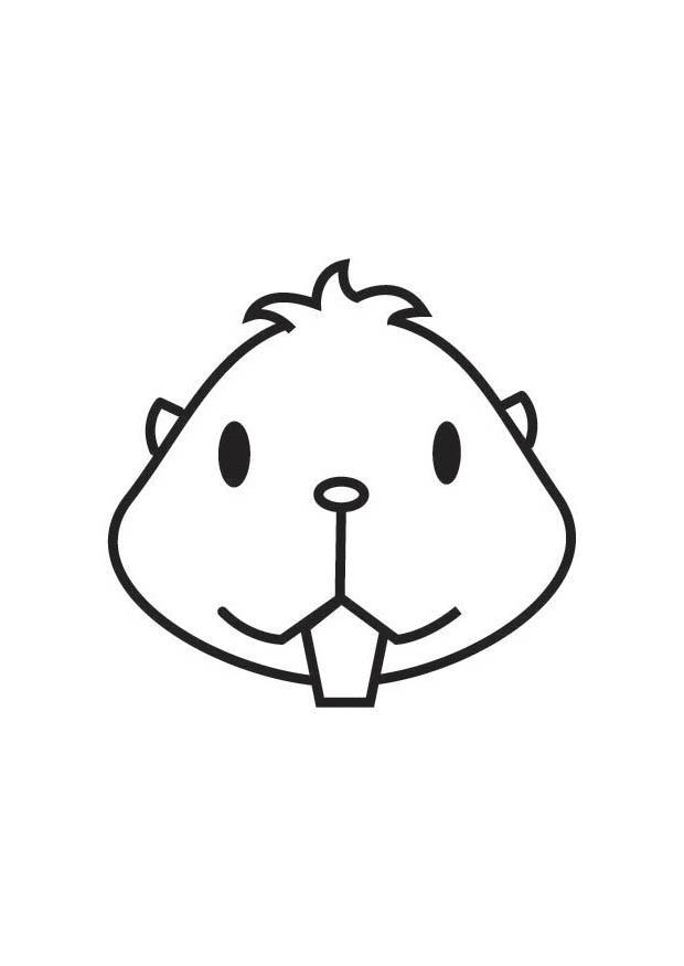 malvorlage hamsterkopf  kostenlose ausmalbilder zum