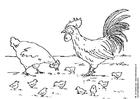 Malvorlage  Henne, Hahn und Küken