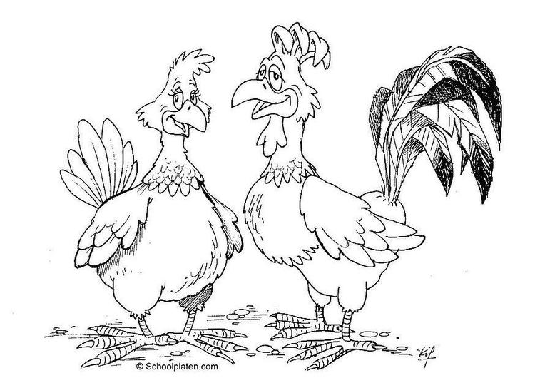Malvorlage Henne und Hahn | Ausmalbild 16869.