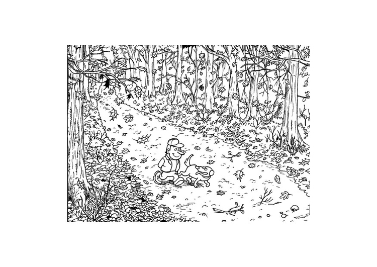 Malvorlage Herbst Waldspaziergang Ausmalbild 9599