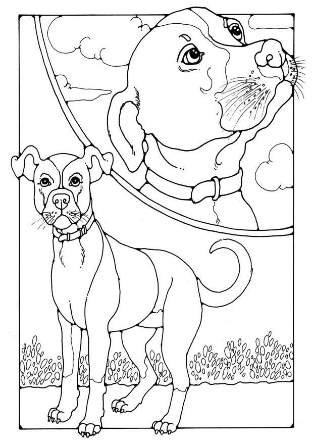 malvorlage hund  kostenlose ausmalbilder zum ausdrucken