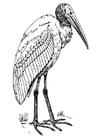 Malvorlage  Ibis