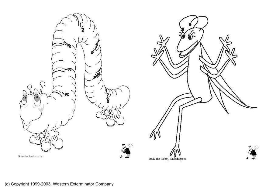 insekten malvorlage kostenlos  malbild