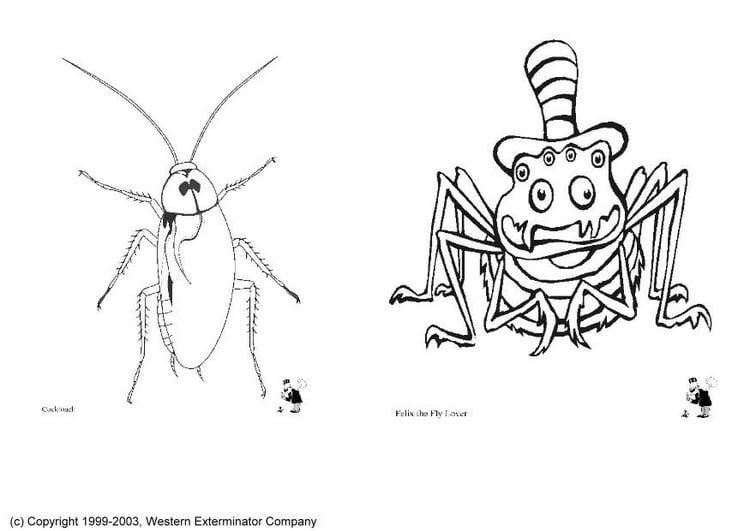 malvorlage insekten - kostenlose ausmalbilder zum ausdrucken.