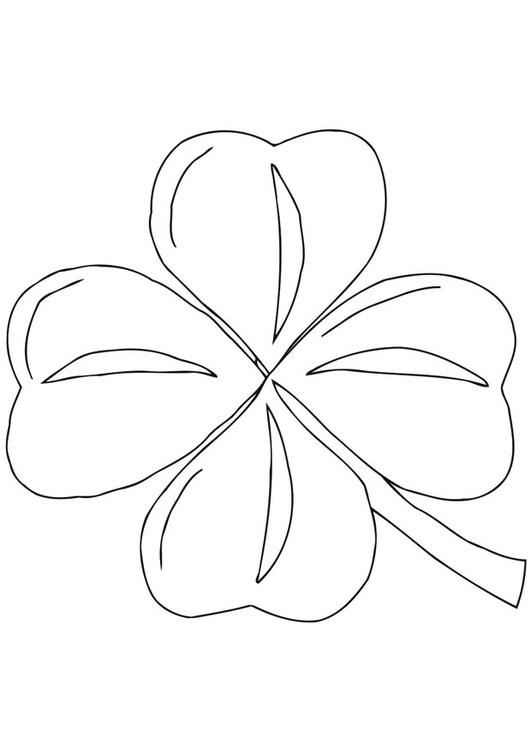 malvorlage irisches kleeblatt  shamrock  ausmalbild 21701