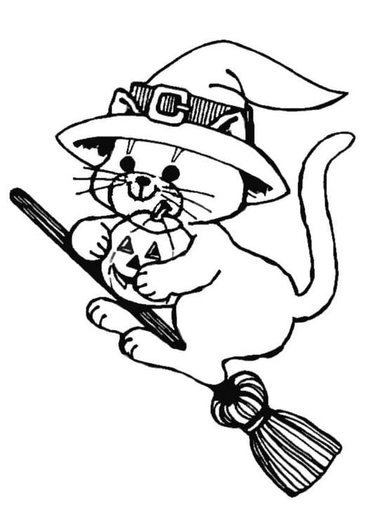 Malvorlage Katze auf Besen | Ausmalbild 8628.