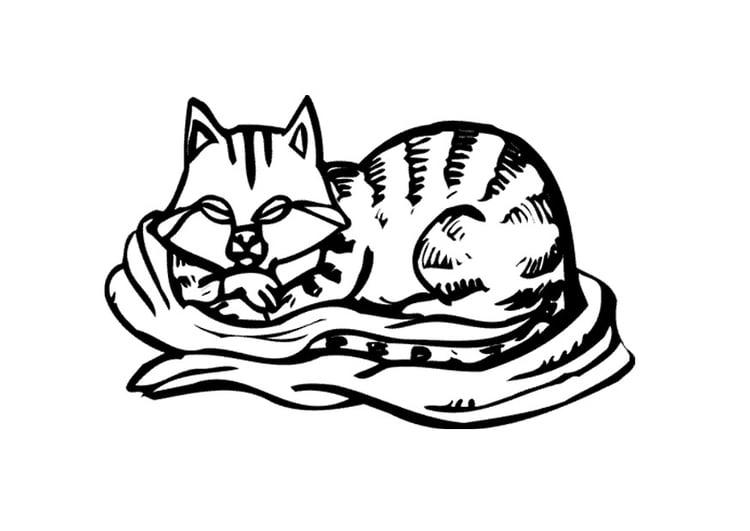 malvorlage katze  kostenlose ausmalbilder zum ausdrucken