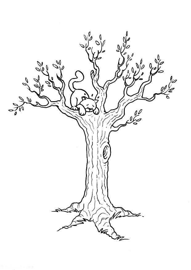 Malvorlage Katze im Baum | Ausmalbild 8179.