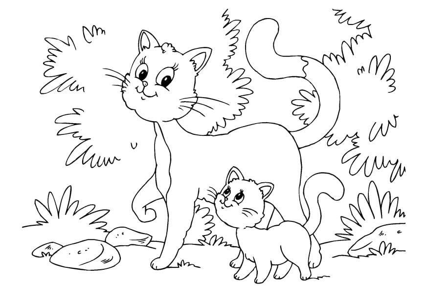 Malvorlage Katze Und Katzchen Kostenlose Ausmalbilder Zum