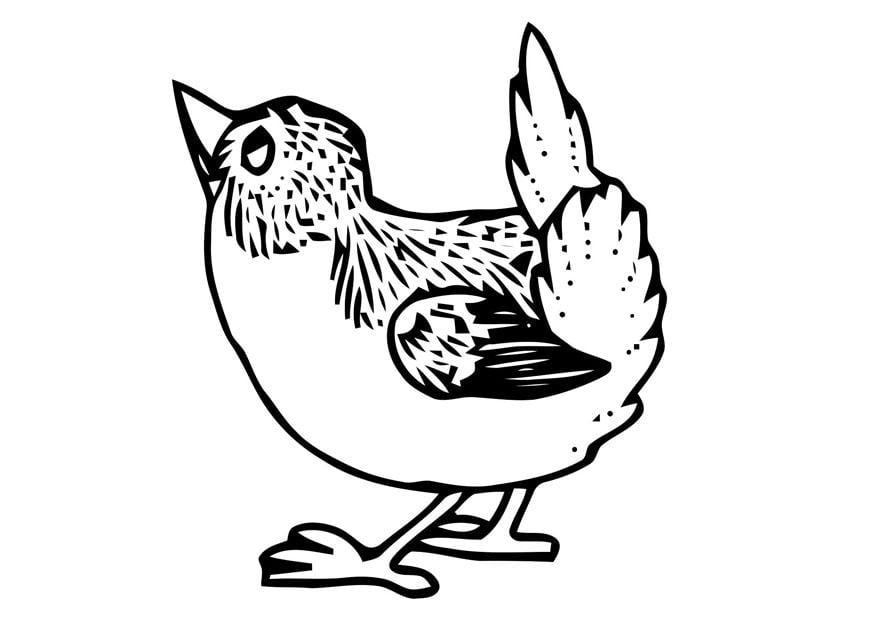 Malvorlage kleiner Vogel | Ausmalbild 20698.