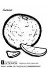 Malvorlage  Kokosnuss
