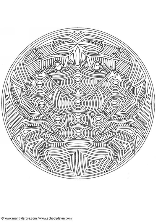 Malvorlage Krabbe | Ausmalbild 4574.