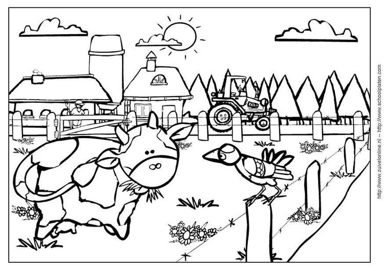 Malvorlage Kuh 2 | Ausmalbild 3641.