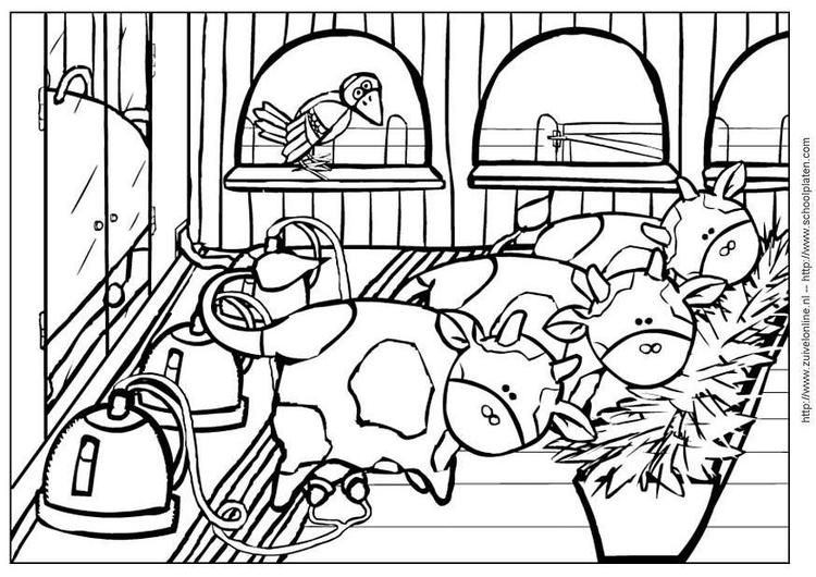Malvorlage Kuh 4 | Ausmalbild 3643.