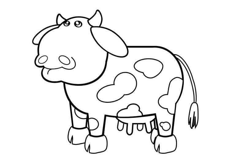 Malvorlage Kuh | Ausmalbild 10243.