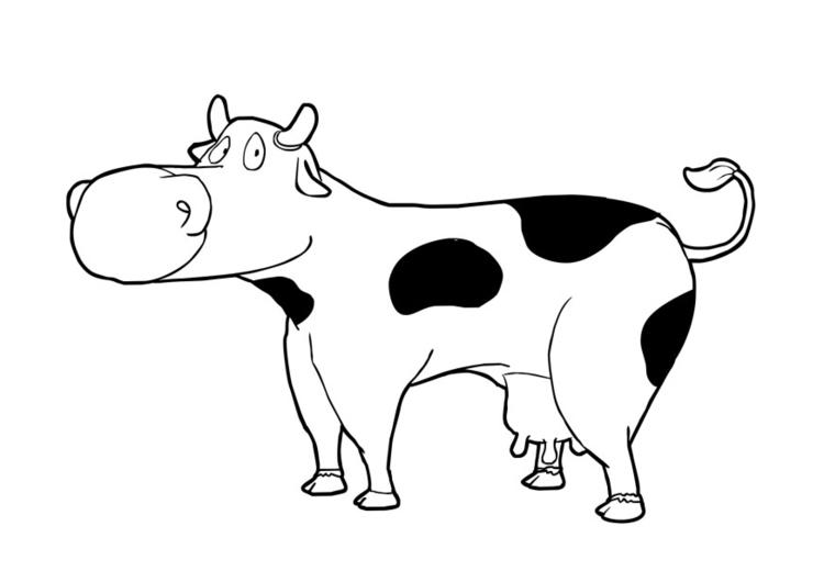 Malvorlage Kuh   Ausmalbild 13780.