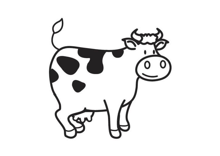 Malvorlage Kuh | Ausmalbild 17541.