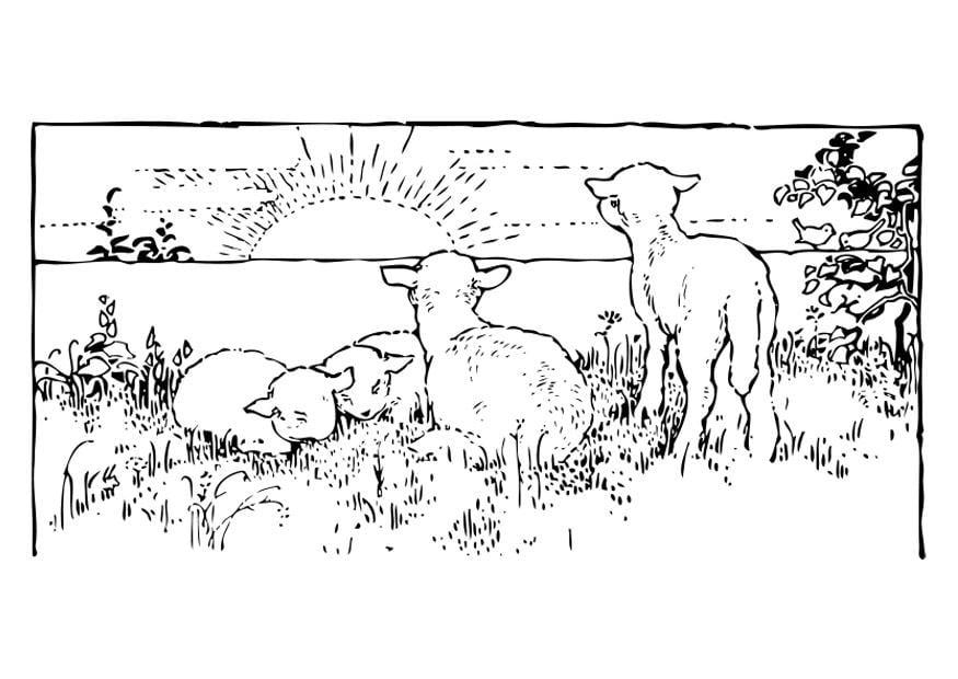 Afbeelding Appel Kleurplaat Malvorlage Landschaft Mit L 228 Mmern Ausmalbild 27462