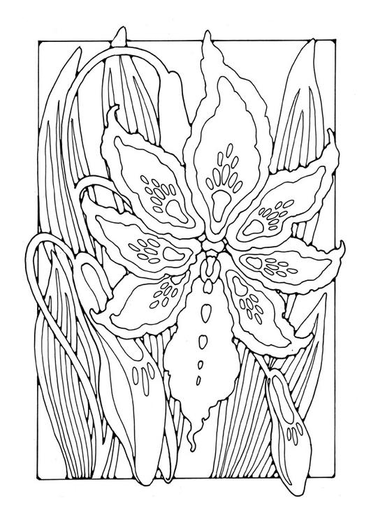 malvorlagen gratis lilien