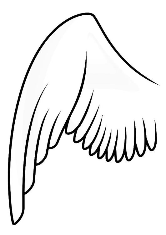 malvorlage linker flügel  kostenlose ausmalbilder zum
