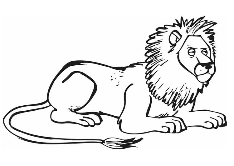 malvorlage löwe  ausmalbild 12841