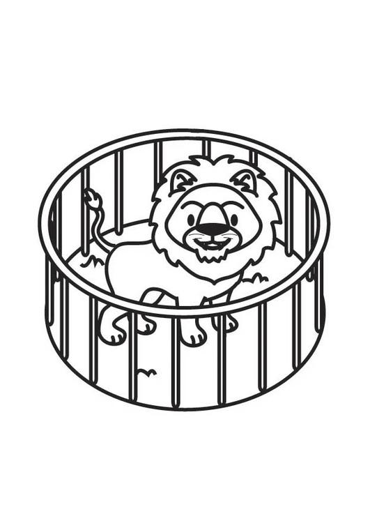malvorlage löwe im käfig  kostenlose ausmalbilder zum