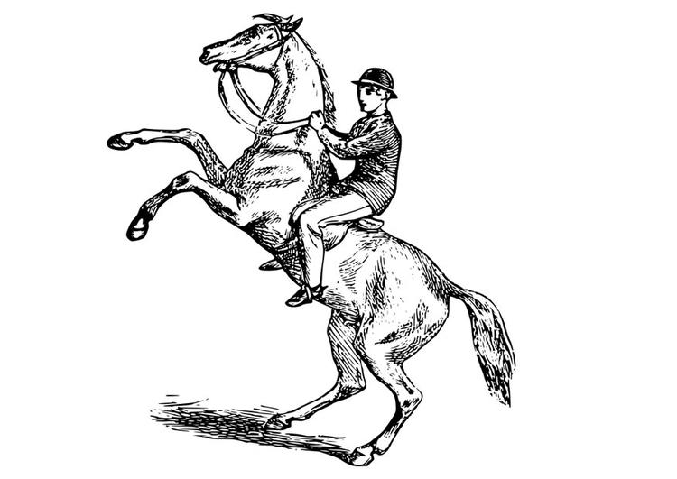 Malvorlage Mann Auf Pferd Kostenlose Ausmalbilder Zum Ausdrucken