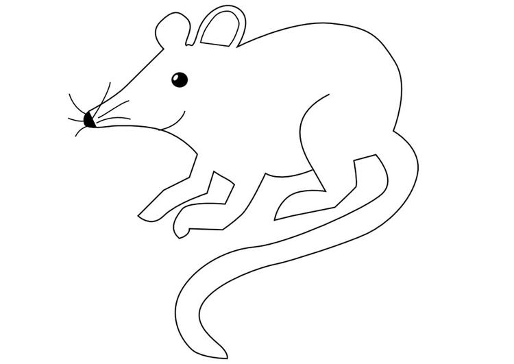 Malvorlage Maus | Ausmalbild 9971.