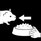 Malvorlage  Meerschwein - füttern