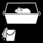 Malvorlage  Meerschwein - Käfig saubermachen