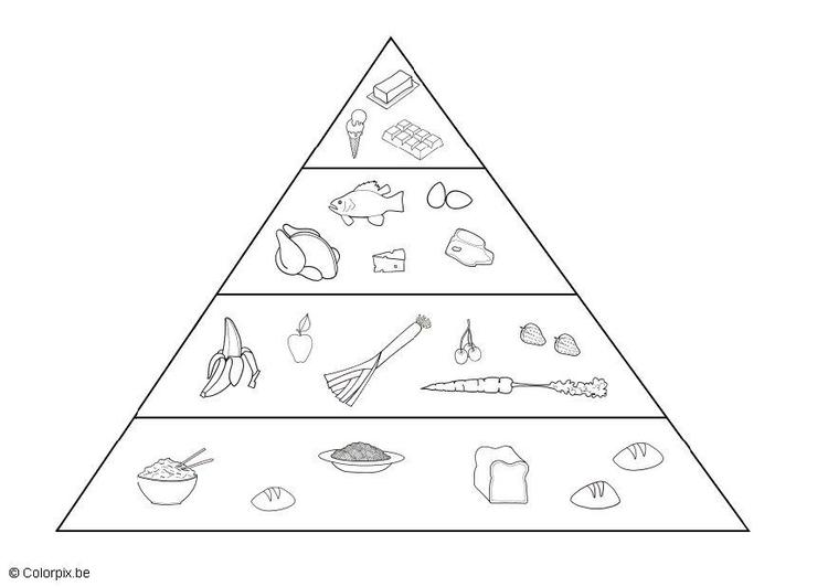 Malvorlage Nahrungspyramide | Ausmalbild 5691.