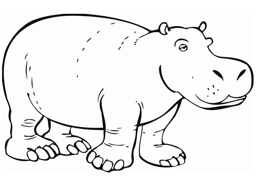 Nett Fantasia Hippo Malvorlagen Bilder - Beispielzusammenfassung ...