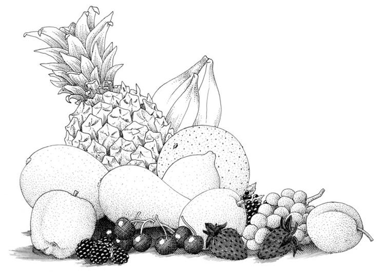 Malvorlage Obst Ausmalbild 9392