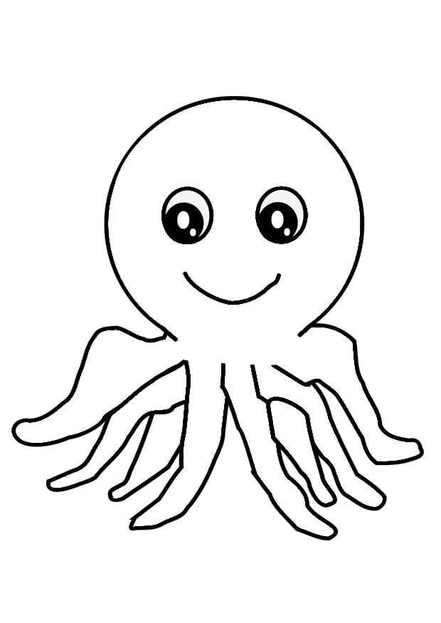 malvorlage oktopus  ausmalbild 29324