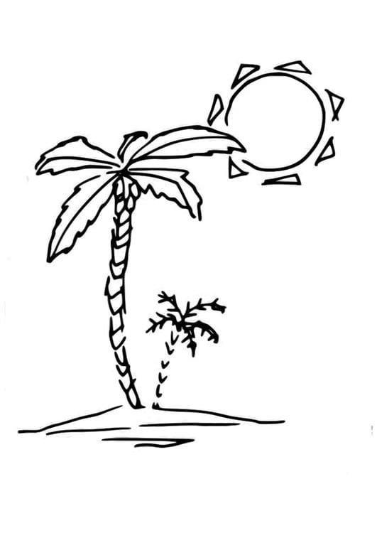 Malvorlage Palme | Ausmalbild 29827.