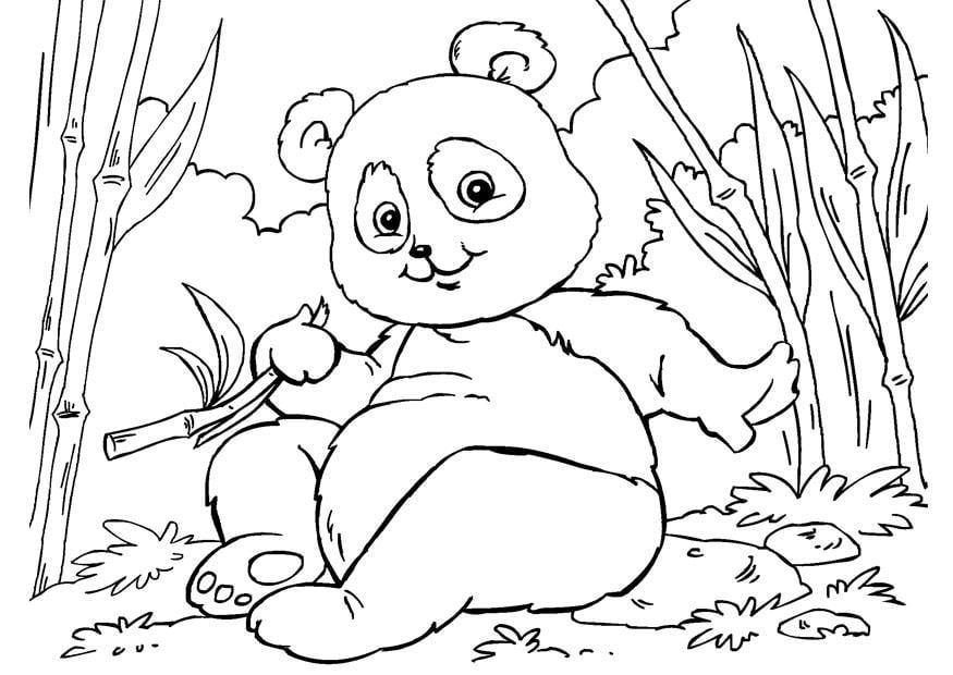 Malvorlage Panda Ausmalbild 27859