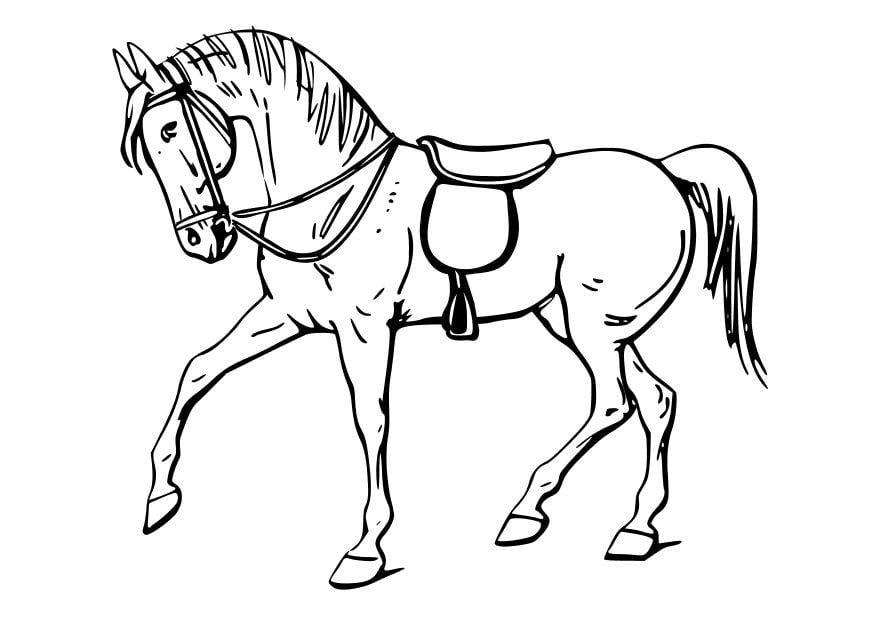 Malvorlage Pferd | Ausmalbild 10347.