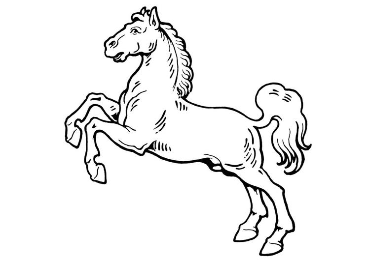 malvorlage pferd  ausmalbild 19310