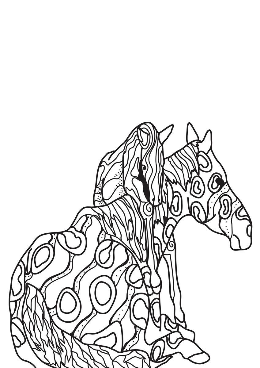 malvorlage pferd mit fohlen  kostenlose ausmalbilder zum