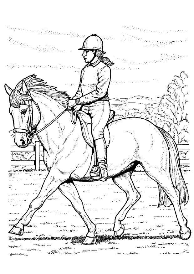 Malvorlage Pferd reiten | Ausmalbild 9118.