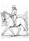 Malvorlage  Pferd reiten