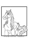 Malvorlage  Pferd
