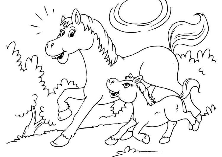 Malvorlage Pferd und Fohlen | Ausmalbild 25967.