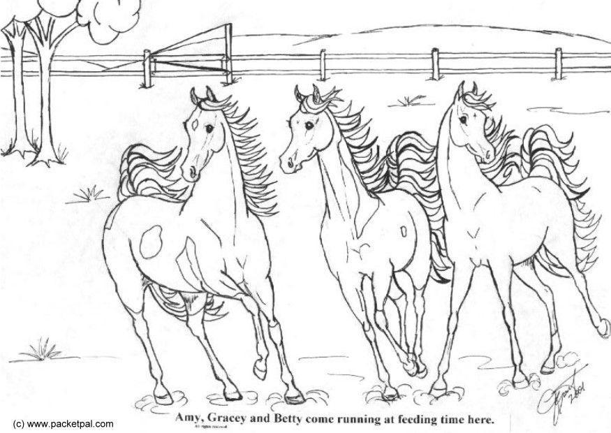 Malvorlage Pferde Futterzeit | Ausmalbild 6092.